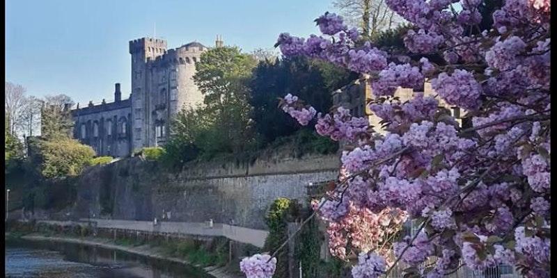 A Glimpse of Kilkenny Castle